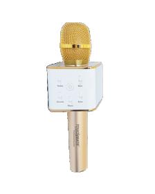 კარაოკე მიკროფონი TOUCHMATE Professional karaoke (TM-QK300)