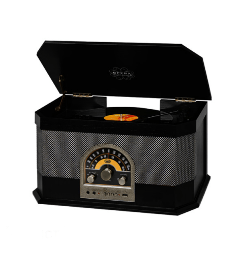 ვინილი Trevi Turntable Vinyl TT1040BT